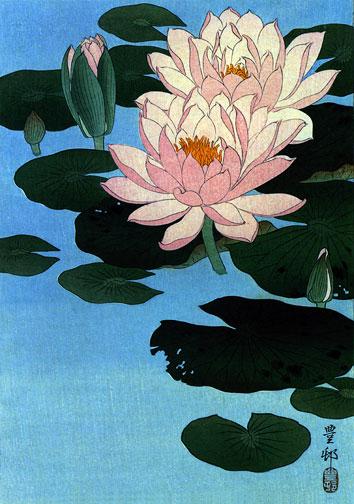 water lily tattoo. The Tattoo Artist BIG Art